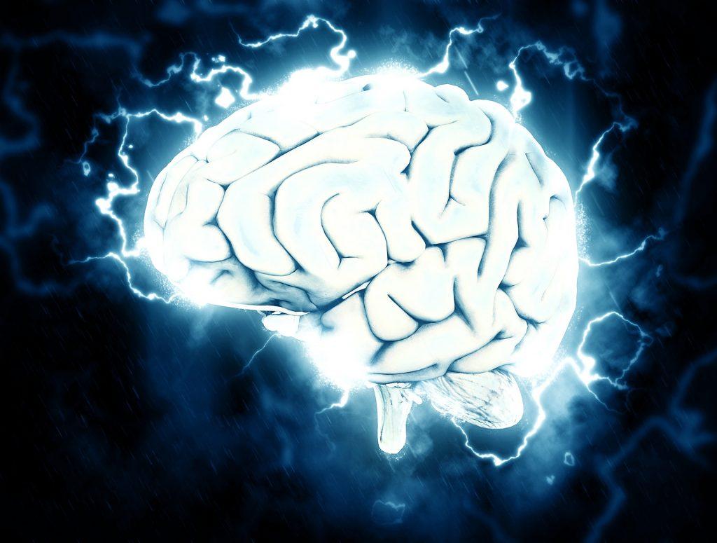 brain-1845962_1920-1024x775